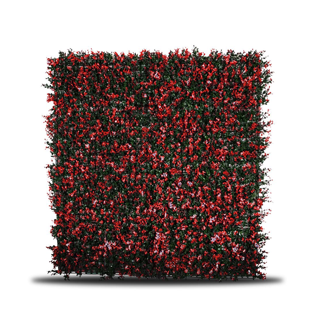 Hoja de té Rojo - IG188003B